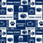 Penn State as a Microcosm of Society