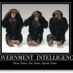 Government Incoherence